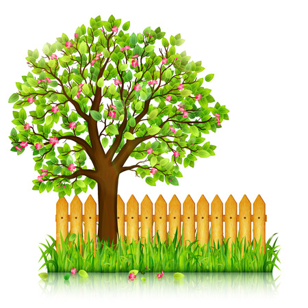 Spring background with green grass, blossoming tree and garden fence vector