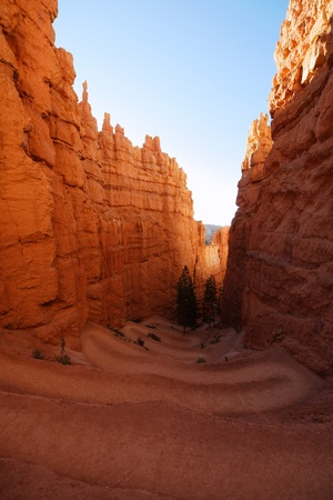 Tortuos trail in Bryce Canyon, Utah