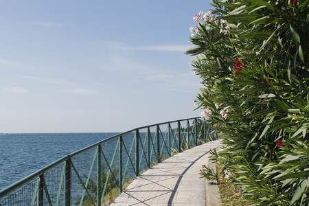 Foto per Walkway with colorful flowers on Garda lake in Italy. - Immagine Royalty Free