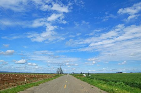 country farm road in the spring