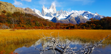 Foto per Trees with autumn colors and Mount Fitz Roy, Patagonia, Argentina - Immagine Royalty Free