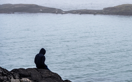 guy sitting on a rock looking at seals. seals on a offshore