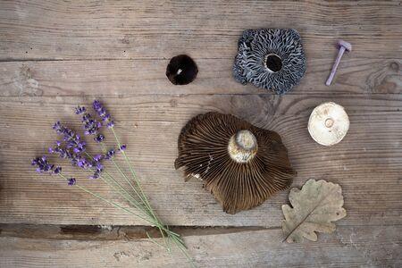 Photo pour Autumn items lavender, fungi, brown leaf on the wooden desk - image libre de droit