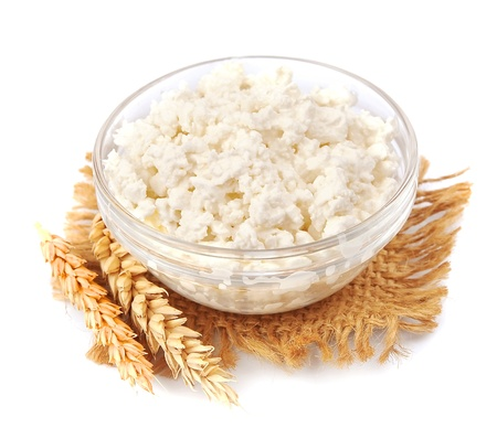 fresh cottage cheese with wheat on white