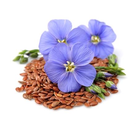 Foto für Flax seeds with flowers close up on white - Lizenzfreies Bild