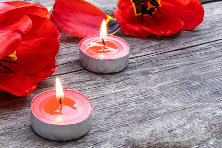 Foto de Two red candles are burning near the tulips and fallen petals. Red burning candle near the petals. - Imagen libre de derechos