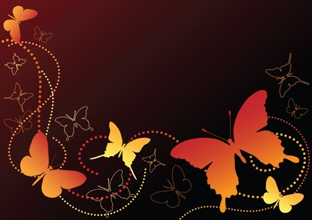 Butterfly on the black. Vector illustration.