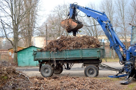 Photo pour Cleaning dry branches and grass on city streets loading into truck trailer. Cleaning dry leaves tractor bucket. Old tractor bucket picks up old and dry branches and leaves and plunges it into a truck. - image libre de droit