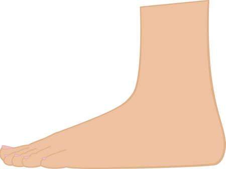 Standing Foot