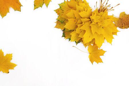 Photo pour Autumn composition of maple leaves.Yellow leaf on white background. - image libre de droit