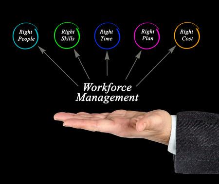 Workforce Management