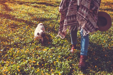 Woman walking pug dog in spring forest. Happy puppy running among yellow flowers in the morning and chews grass. Dog having fun