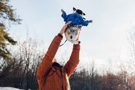 Pug dog walking with his master in winter forest. Man throwing his pet up for fun. Puppy wearing winter coat.