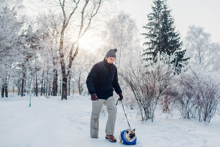 Pug dog walking on snow with his master in park. Puppy wearing winter coat. Clothes for animals