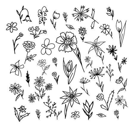 Illustration pour Hand drawn set of flowers. Vector illustration. Doodle lines, frame elements. - image libre de droit