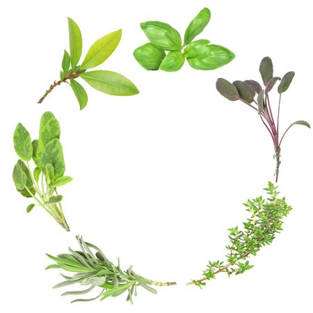 Organic herb garland of basil, purple sage, common thyme, lavender, variegated sage, and bay set against a white background. (Clockwise order)