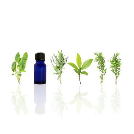 Herb leaf selection of sage, lavender, bay, common thyme, rosemary and aromatherapy essential glass oil bottle with reflection, over white background.