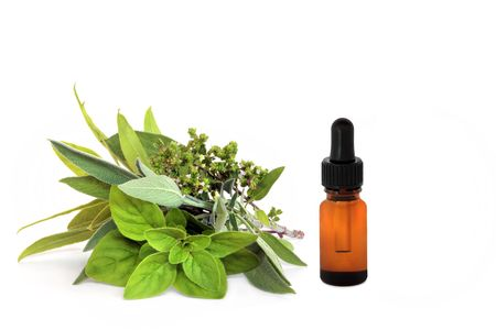 Herb leaf and flower selection of bay, oregano, sage and thyme with an essential oil dropper bottle, over white background.