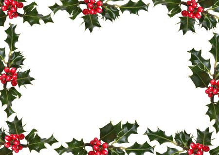 Holly leaf sprigs with red berries forming an abstract border over white background.