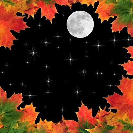 Fantasy abstract of maple leaves  forming a border with full moon and stars in a black sky beyond.