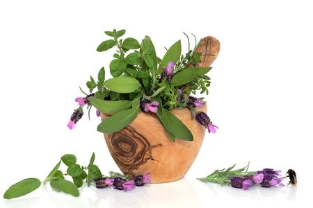 Lavender flowers and mixed herb leaves in an olive wood mortar with pestle with a bumblebee next to a floral sprig,  over white background.