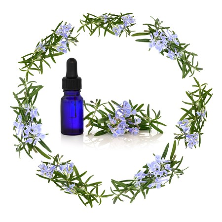 Rosemary herb flowers forming a circular garland with aromatherapy essential oil blue glass dropper bottle in the centre with flower and leaf sprig, isolated over white background.