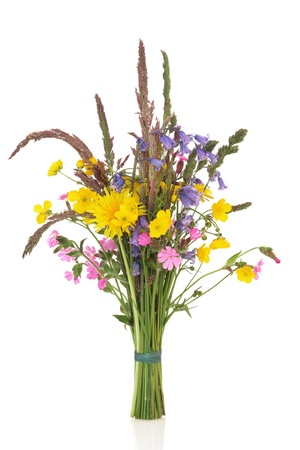 Spring wildflower posy with bluebell, buttercup, dandelion and rose campion flowers with wild grass stems, isolated over white background.