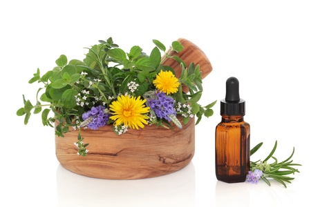 Herb leaf and flower sprigs of rosemary, lavender, mint, marjoram and dandelion flowers  in an olive wood mortar with pestle and an essential oil glass bottle, isolated over white background.