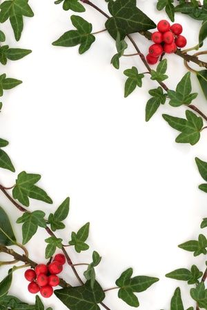 Ivy leaf and holly leaf sprigs with red berries creating an abstract border isolated over white background.
