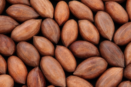 Pecan nuts in shells forming a background