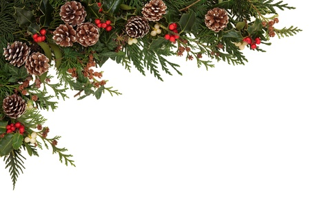 Christmas border of holly, ivy, mistletoe and cedar cypress leaf sprigs with pine cones over white background の写真素材