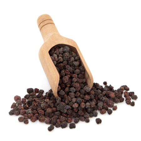 Schisandra berries used in chinese herbal medicine in a wooden scoop over white background  Wu wei zi