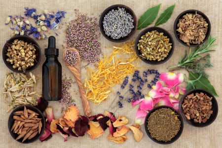 Herbal naturopathic medicine selection also used in pagan witches magical potions over old paper background