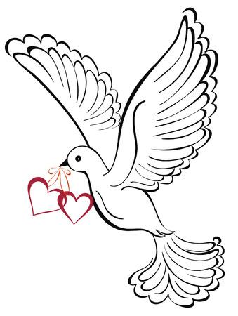 Foto de Vector dove with heart shaped - Imagen libre de derechos