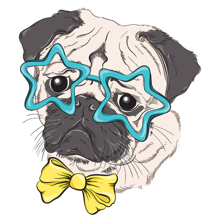 Fashion portrait of pug dog hipster in glasses in the form of stars and bow isolated on white. Vector hand drawn illustration