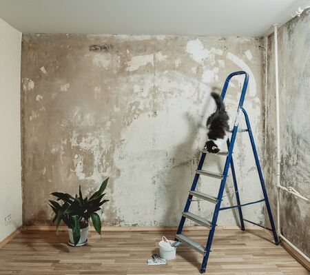 Photo pour Wall preparation for painting. Cleans the wall with a putty knife. Cat sitting on the stairs. - image libre de droit