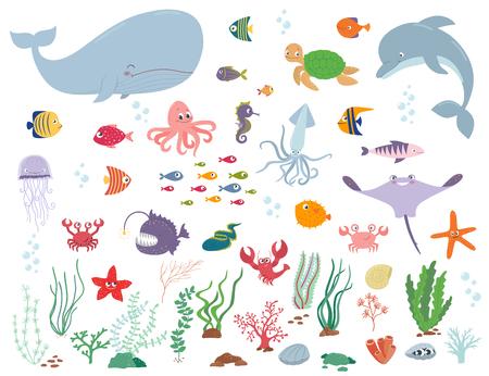 Illustration pour Sea animals and water plants. Cartoon vector illustration on a white background - image libre de droit