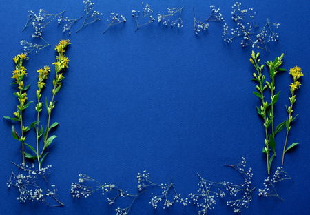 Photo pour frame of fresh yellow flowers on a dark blue background. simple top view composition, space for a text - image libre de droit