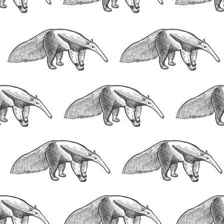Illustration pour Giant anteater. Seamless pattern with animals South America. Hand drawing of wildlife. Vector illustration art. Black and white. Old engraving. Vintage. Design for fabrics, paper, textiles, fashion. - image libre de droit