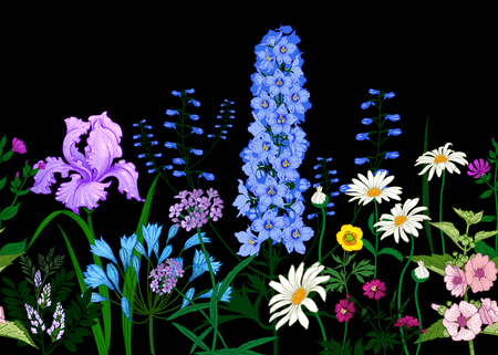 Illustration pour BorderÊwith Wild flowers. Seamless summer pattern with field flowers on black background. Floral background for printing wallpaper, paper, textiles, fabrics. Hand drawing sketch. Fashion illustration. - image libre de droit