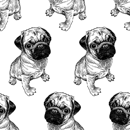 Seamless pattern with cute puppies. Home pets isolated on white background. Sketch. Vector illustration art. Realistic portraits of animal. Vintage. Black and white hand drawing of dogs pug.