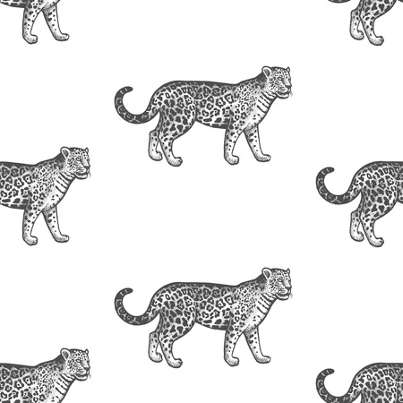 Ilustración de Jaguar. Seamless pattern with animals South America. Hand drawing of wildlife. Vector illustration art. Black and white. Old engraving. Vintage. Design for fabrics, paper, textiles, fashion. - Imagen libre de derechos