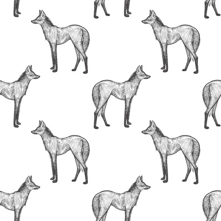 Illustration pour Maned Wolf. Seamless pattern with animals South America. Hand drawing of wildlife. Vector illustration art. Black and white. Old engraving. Vintage. Design for fabrics, paper, textiles, fashion. - image libre de droit