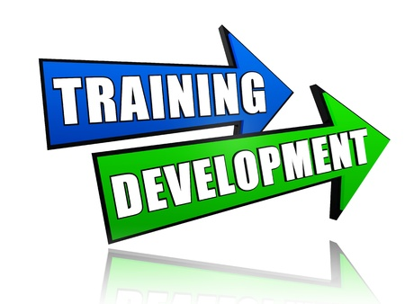 text training development in 3d colored arrows, business concept