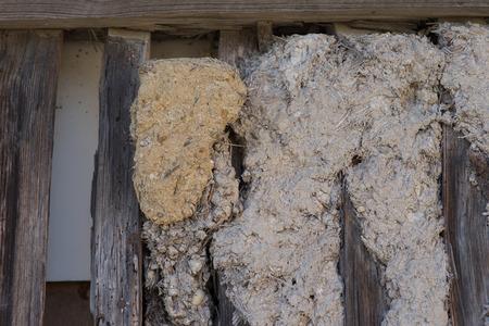 wall of mud and timbered