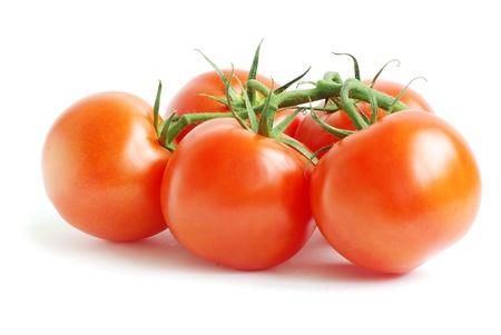 Foto für branch of tomato isolated over white background - Lizenzfreies Bild