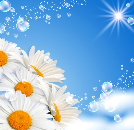 Photo for Daisies and bubbles against the sky - Royalty Free Image