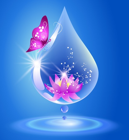 Illustration pour Water drop and lily  Symbol of clean water  - image libre de droit