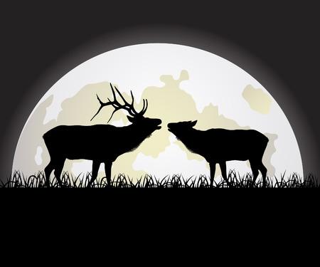 Deer against the Moon