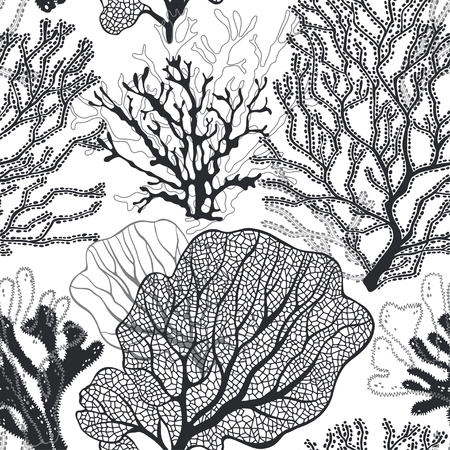 Illustration pour Coral reef. Vector background on the marine theme.Black and white. - image libre de droit